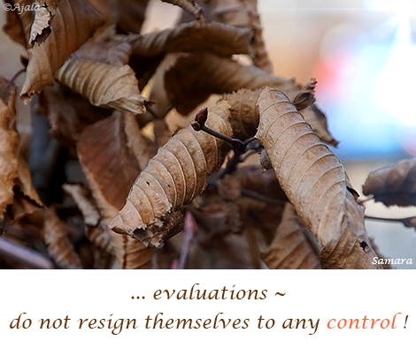 evaluations--do-not-resign-themselves-to-any-control