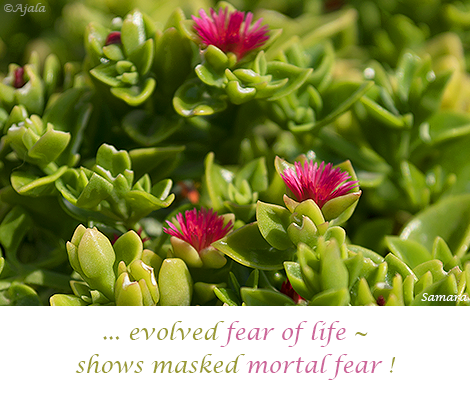 evolved-fear-of-life--shows-masked-mortal-fear