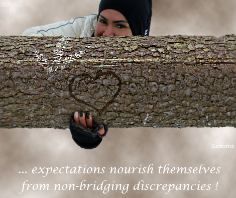 expectations-nourish-themselves-from-non-bridging-discrepancies