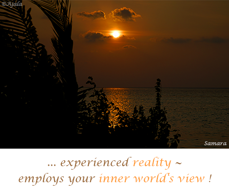experienced-reality--employs-your-inner-world-s-view