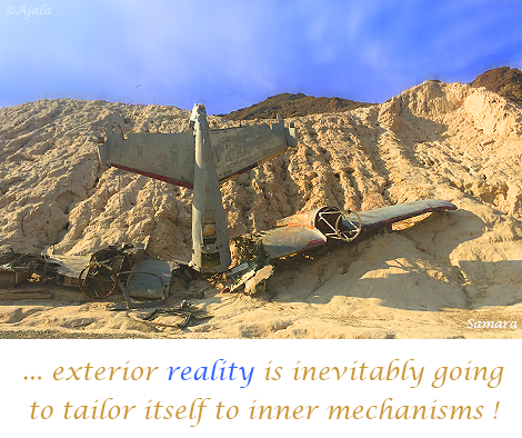 exterior-reality-is-inevitably-going-to-tailor-itself-to-inner--mechanisms