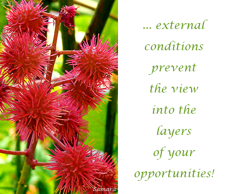 external-conditions-prevent-the-view-into-the-layers-of-your-opportunities