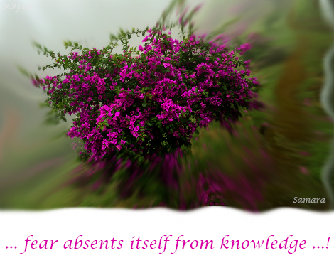 fear-absents-itself-from-knowledge