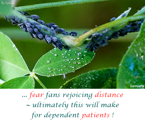 fear-fans-rejoicing-distance--ultimately-this-will-make-for-dependent-patients