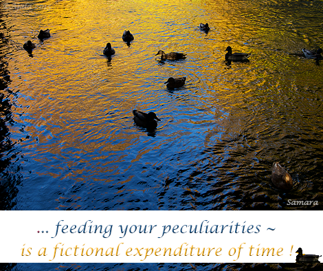 feeding-your-peculiarities--is-a-fictional-expenditure-of-time
