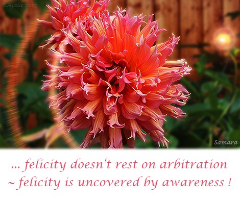 felicity-doesn-t-rest-on-arbitration--felicity-is-unconvered-by-awareness