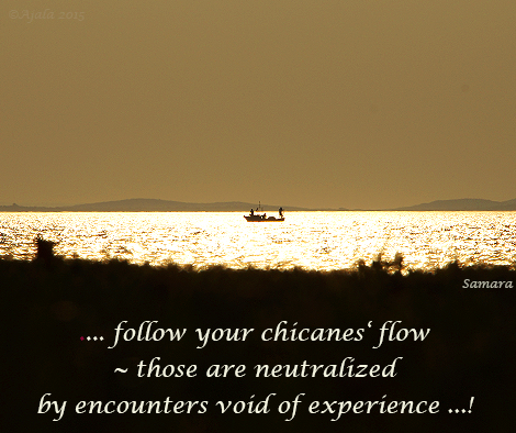 follow-your-chicances-flow--those-are-neutralized-by-encounters-void-of-experience