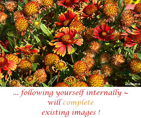 following-yourself-internally--will-complete-existing-images