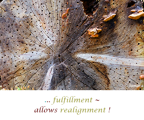 fulfillment--allows-realignment