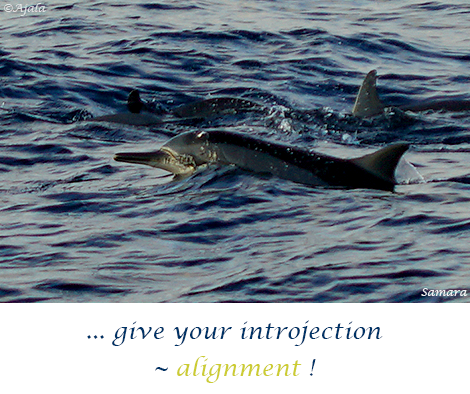 give-your-introjection--alignment