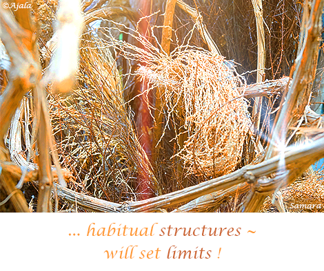 habitual-structures--will-set-limits