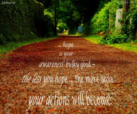 hope-is-your-awareness-bulky-good--the-less-you-hope-the-more-agile-your-actions-will-become