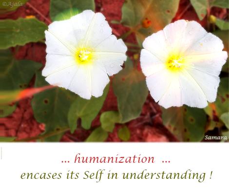 humanization-encases-its-Self-in-understanding