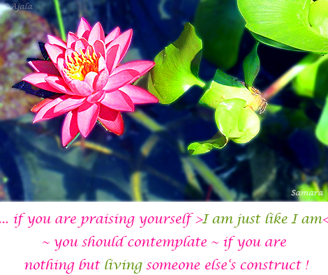 if-you-are-praising-yourself-I-am-just-like-I-am--you-should-contemplate--if-you-are-nothing-but-living-someone-else-s-construct