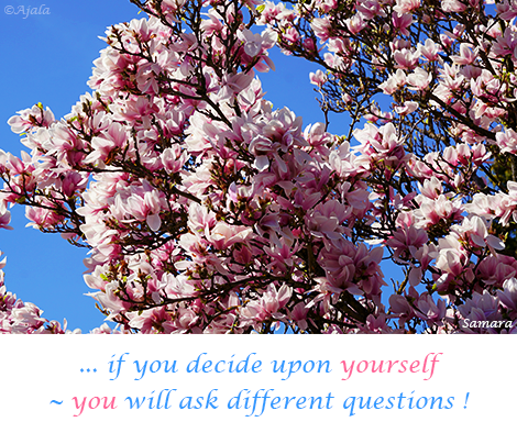 if-you-decide-upon-yourself--you-will-ask-different-questions