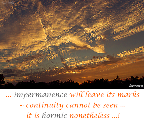impermanence-will-leave-its-marks--continuity-cannot-be-seen-it-is-hormic-nonetheless