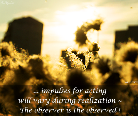 impulses-for-acting-will-vary-during-realization---The-observer-is-the-observed