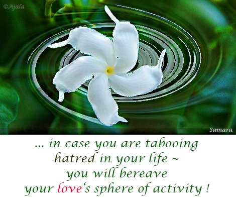 in-case-you-are-tabooing-hatred-in-your-life--you-will-bereave-your-love-s-sphere-of-activity