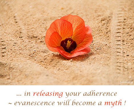 in-releasing-your-adherence--evanescence-will-become-a-myth