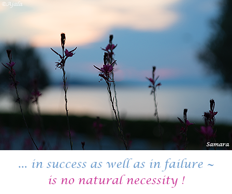 in-success-as-well-as-in-failure--is-no-natural-necessity