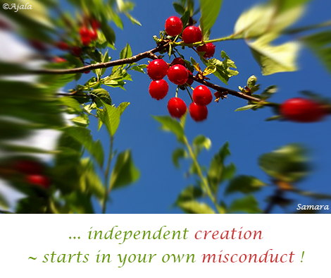 independent-creation--starts-in-your-own-misconduct