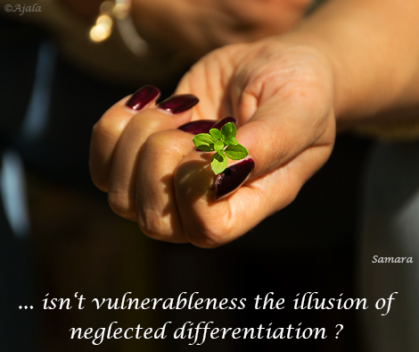 isn-t-vulnerableness-the-illusion-of-neglected-differentiation