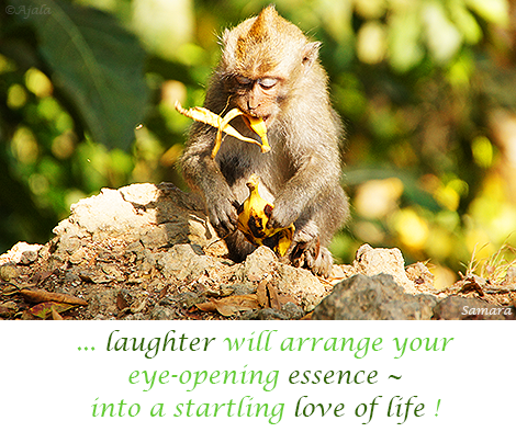 laughter-will-arrange-your-eye-opening-essence--into-a-startling-love-of-life