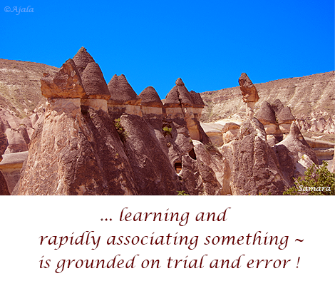 learning-and-rapidly-associating-something--is-grounded-on-trial-and-error
