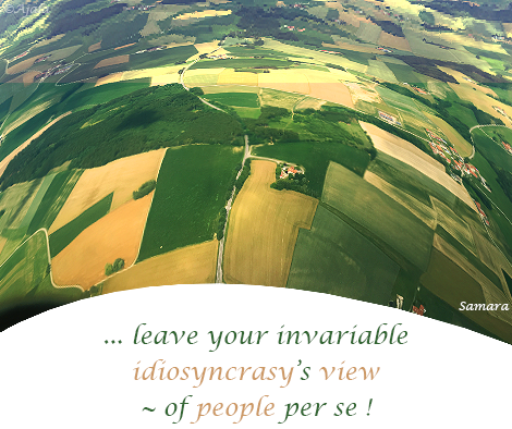leave-your-invariable-idiosyncrasy-s-view--of-people-per-se