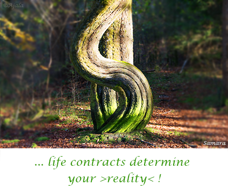 life-contracts-determine-your-reality