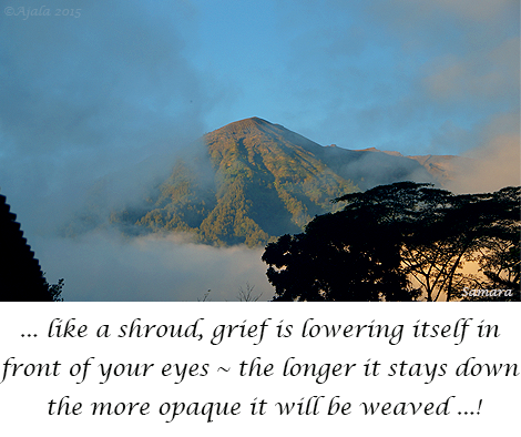 like-a-shround-grief-is-lowering-itself-in-front-of-your-eyes--the-longer-it-stays-down-the-more opaque-it-will-be-weaved