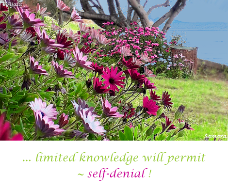 limited-knowledge-will-permit--self-denial
