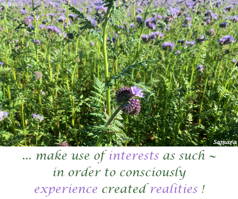 make-use-of-interests-as-such--in-order-to-consciously-experience-created-realities