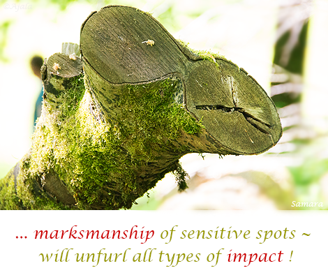 marksmanship-of-sensitive-spots--will-unfurl-all-types-of-impact