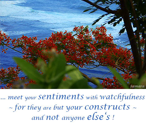 meet-your-sentiments-with-watchfullness--for-they-are-but-your-constructs--and-not-anyone-else-s