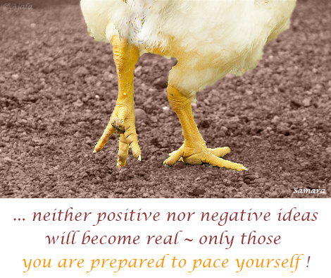 neither-positive-nor-negative-ideas-will-become-real--only-those-you-are-prepared-to-pace-yourself