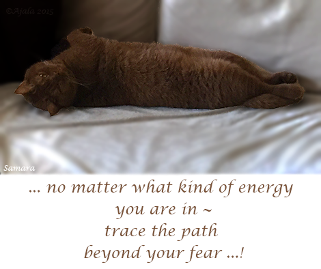 no-matter-what-kind-of-energy-you-are-in--trace-the-path-beyond-your-fear