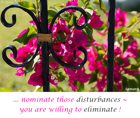 nominate-those-disturbances--you-are-willing-to-eliminate