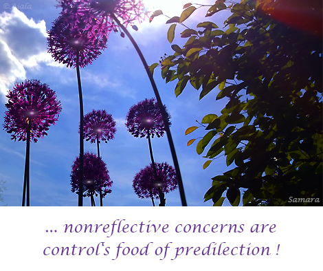 nonreflective-concerns-are-control-s-food-of-predilection