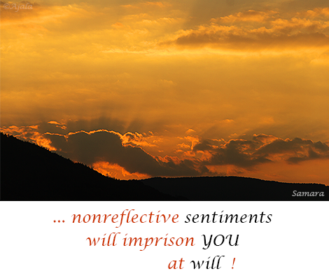 nonreflective-sentiments-will-imprison-YOU-at-will