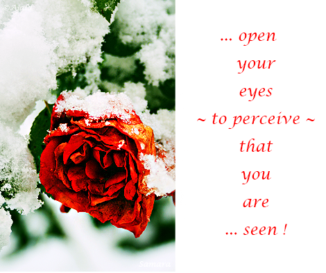 open-your-eyes--to-perceive-tell--that-you-are-seen
