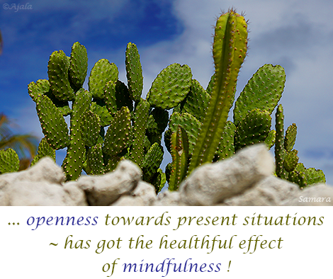 openness-towards-present-situations--has-got-the-healthful-effect-of-mindfulness