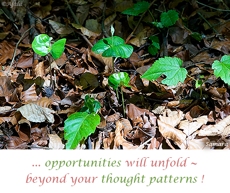 opportunities-will-unfold--beyond-your-thought-patterns