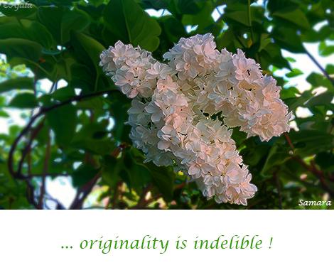 originality-is-indelible