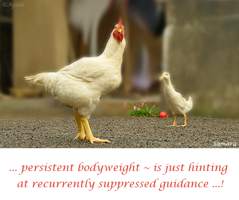 persistent-bodyweight--is-just-hinting-at-recurrently-suppressed-guidance