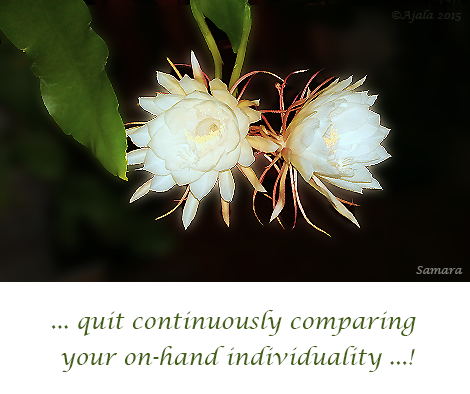 quit-continuously-comparing-your-on-hand-individuality