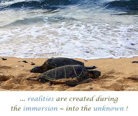 realities-are-created-during-the-immersion--into-the-unknown