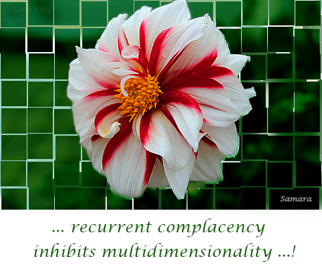 recurrent-complacency-inhibits-multidimensionality