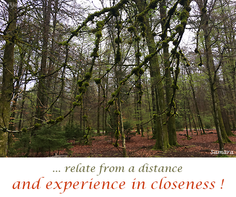 relate-from-a-distance-and-experience-in-closeness