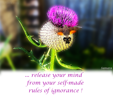 release-your-mind-from-your-self-made-rules-of-ignorance